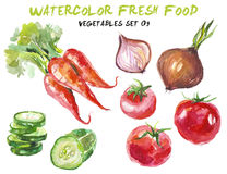 Watercolor vegetables isolated on white Stock Photography