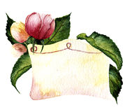 Watercolor vignette with rose and leaves. Stock Image