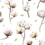 Watercolor vintage background with twigs and cotton flowers boho. Decoration. Softness Botanical watercolour seamless pattern print. Bohemian floral branch Royalty Free Stock Photos