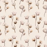 Watercolor vintage background with twigs and cotton flowers boho. Decoration. Softness Botanical watercolour seamless pattern print. Bohemian floral branch Stock Photography