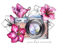 Watercolor vintage camera with flowers. Composition with vintage brown camera and pink flowers isolated on white background. Watercolor hand drawn illustration stock illustration