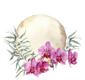 Watercolor vintage card with orchids and eucalyptus leaves. Hand painted floral botanical illustration isolated on white Royalty Free Stock Photo