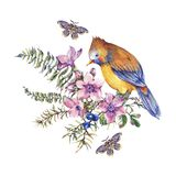 Watercolor vintage floral forest greeting card with bird, berries, moth, fern, pink flowers royalty free illustration