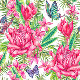 Watercolor vintage floral tropical seamless pattern stock illustration