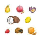 Watercolor vintage  Ink hand drawn Royalty Free Stock Photography