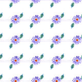 Watercolor violet daisy Royalty Free Stock Image