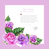 Watercolor violet and pink rose with leaves in left doen corner of violet frame.White background middle for your text Royalty Free Stock Photo