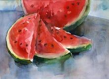 Watercolor watermelon Stock Photo