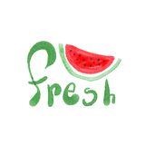 Watercolor watermelon with lettering fresh. Hand made Royalty Free Stock Images