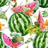 Watercolor watermelon melon pattern vector illustration