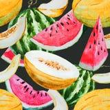Watercolor watermelon melon pattern Stock Photos