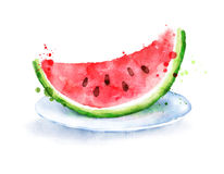 Watercolor watermelon on plate stock illustration