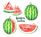 Watercolor watermelon set isolated on white background Royalty Free Illustration