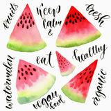 Watercolor watermelon slice set with calligraphy texts. Watercolor painting illustration Royalty Free Stock Image