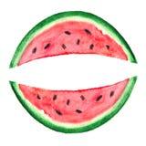 Watercolor Watermelon Slice. Vector illustration for your design vector illustration