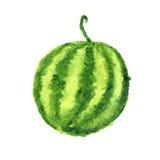 Watercolor watermelon,  on white Stock Photo