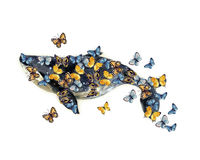 Watercolor whale illustration sketch with butterflies. On the white background. Watercolor sketch blue whale. Illustration isolated on white background for Royalty Free Stock Image