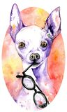 Watercolor white doggy with glasses in its jaws. Dog with purple peaky ears. Hand-drawn illustration. royalty free illustration