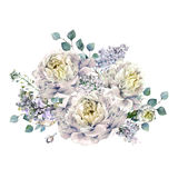 Watercolor White Peonies and Lilac Bouquet Royalty Free Stock Photography