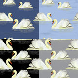 Watercolor white swan in the water. Seamless pattern set Royalty Free Stock Image