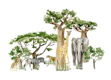 Free Watercolor Wild Africa Animal Savannah Elephant, Giraffe Cheetah And Tree Savaanah. Nature Africa, Southern Trees For Greeting Car Stock Images - 186944354