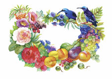 Watercolor wild exotic birds on flowers Royalty Free Stock Photo