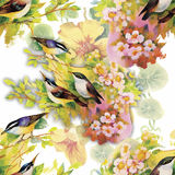 Watercolor Wild exotic birds on flowers seamless pattern on white background.  Stock Images
