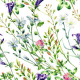 Watercolor wild flowers seamless pattern. Bell flower, clover, weeds and meadow herbs. Watercolor wild field background. Hand painted floral illustration Stock Photo