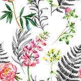 Watercolor Wild Garden Flowers Seamless Pattern. Stock Photo