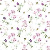 Watercolor wildflower pattern Stock Photos