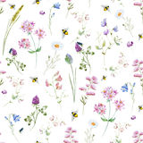 Watercolor wildflower pattern Stock Image