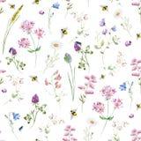Watercolor wildflower pattern Stock Image