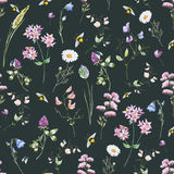 Watercolor wildflower pattern Stock Photography