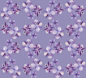 Watercolor willow-herb pattern. Watercolor willow-herb seamless pattern. Floral design. Small violet flowers Royalty Free Stock Images