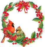 Watercolor winter Christmas wreath and bird with mistletoe, berries and Christmas tree. Stock Images