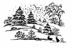 Watercolor winter Coniferous forest landscape with rabbits, vector illustration. Stock Photos
