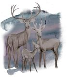 Watercolor winter family deers in the forest vector illustration