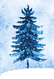 Watercolor winter fir tree Stock Images