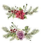 Watercolor winter floral elements isolated on white background. Vintage style set with christmas tree branches, rose Stock Photo