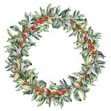 Watercolor winter floral wreath with berries. Hand painted snowberry branch with white and red berry isolated on white. Background. Christmas botanical frame royalty free illustration