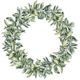 Watercolor winter floral wreath. Hand painted snowberry branch with white berry isolated on white background. Christmas. Botanical frame for design or print royalty free illustration