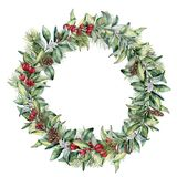 Watercolor winter floral wreath. Hand painted snowberry and fir branches, red berries with leaves, pine cone isolated on. White background. Christmas Stock Photos