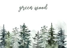 Free Watercolor Winter Forest Background Hand Painted Snowy Green Pine Trees Landscape On White Backdrop. Christmas Card Design Stock Photo - 163872740