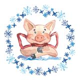 Watercolor Winter greeting card with cute Pig with bow. 2019 Chinese New Year of the Pig. Watercolor illustration. stock illustration