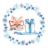 Watercolor Winter greeting card with cute Pig with gift. 2019 Chinese New Year of the Pig. Watercolor illustration. vector illustration