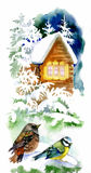 Watercolor winter landscape with snowy house with birds illustration. Royalty Free Stock Photo