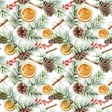 Watercolor winter pattern with pine branch, cones. Hand painted fir branch, orange slice, barberry, cinnamon isolated on stock illustration