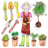 Watercolor woman, seedlind, and garden tools. Woman, seedlind, and garden tools - watercolor painting on white background, set stock illustration