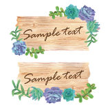 Watercolor wood slice banner with succulents. On white background Stock Images