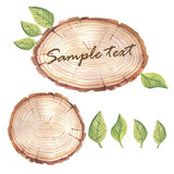 Watercolor wood slice banner with succulents Stock Photos